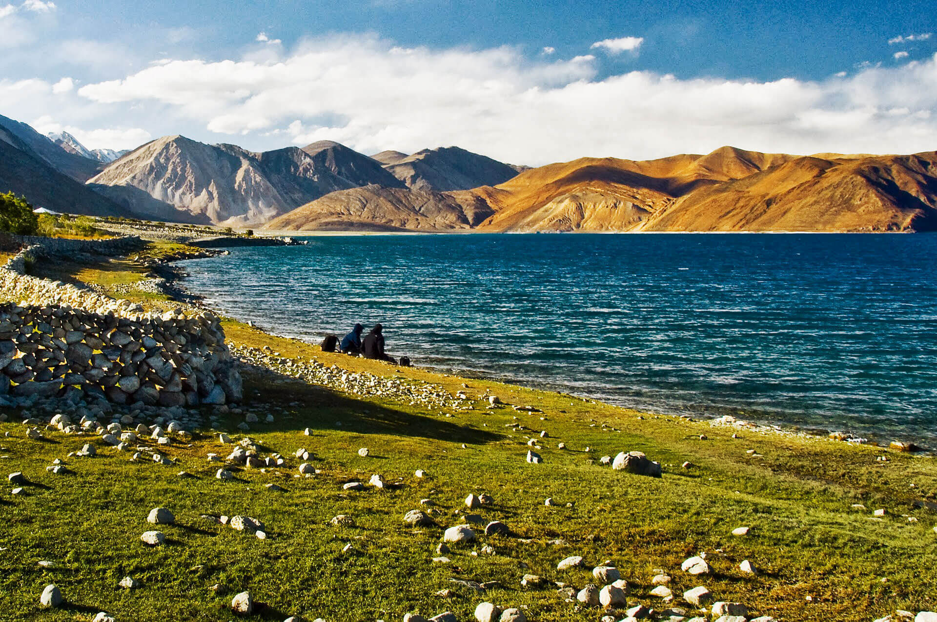 Spangmik_Ladakh_909 (1)