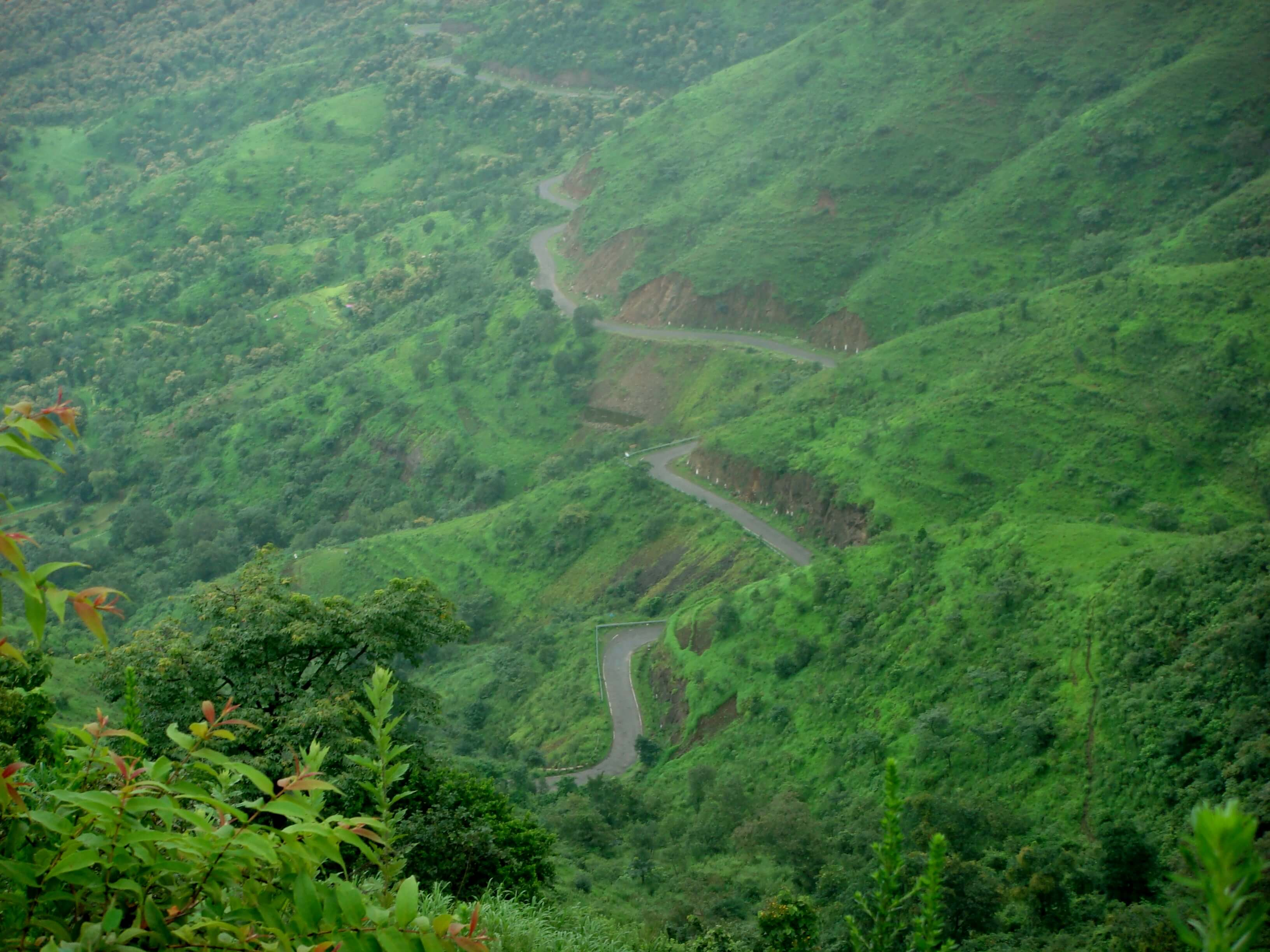 mahabaleshwarr