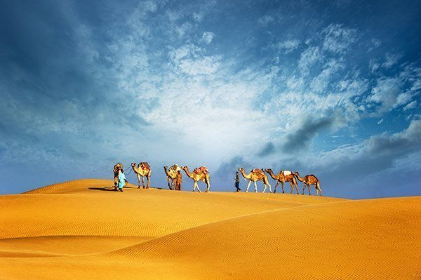 desert-safari-in-dubai-tours