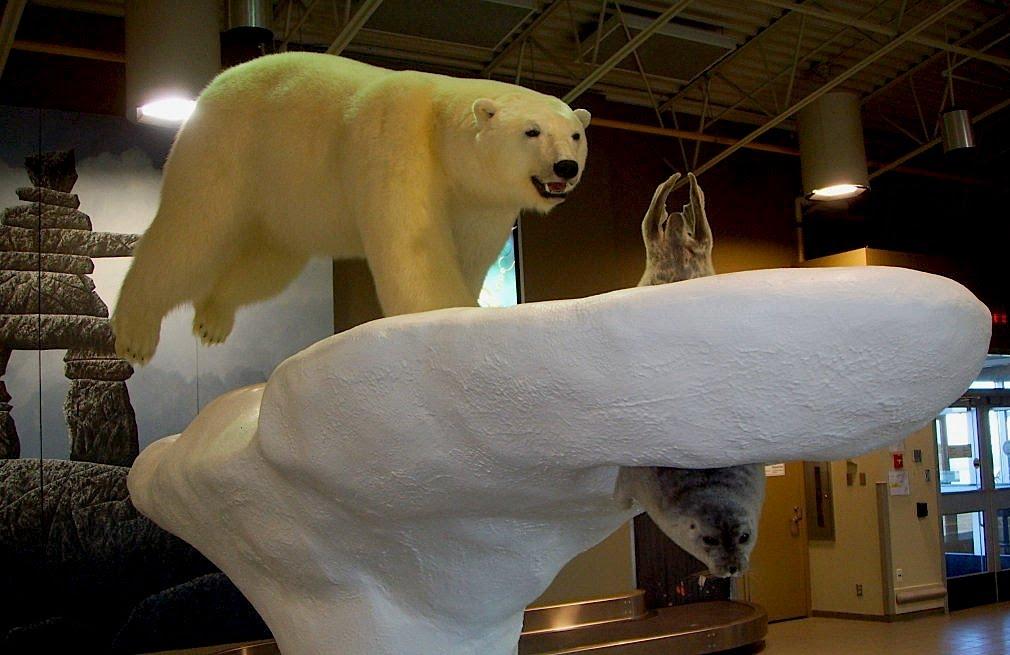 Kesari-Tours-Polar-Museum