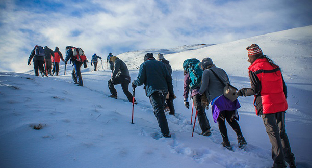 Kesari Tours Trek through the Kuari Pass