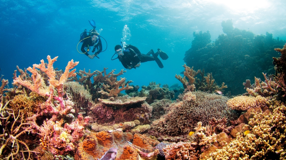 Great Barrier Reef - Australia - Kesari Tours
