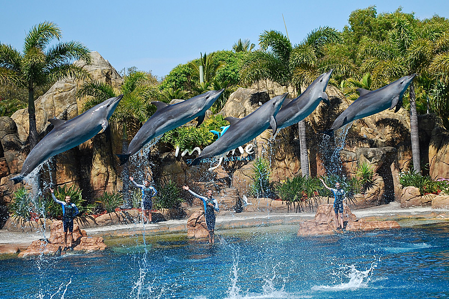 Sea World - Australia - Kesari Tours
