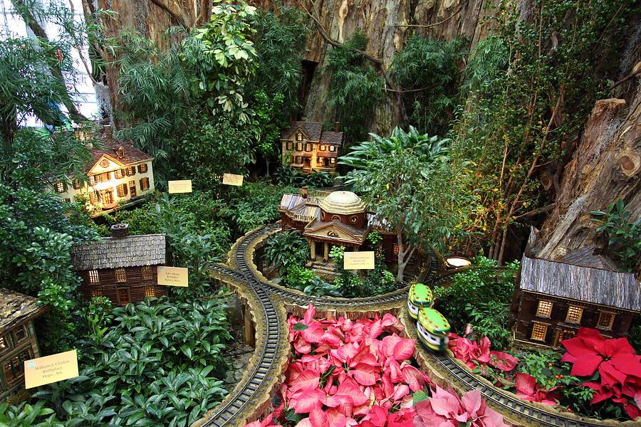 National-Botanical-Gardens-Seychelles-Kesari Tours